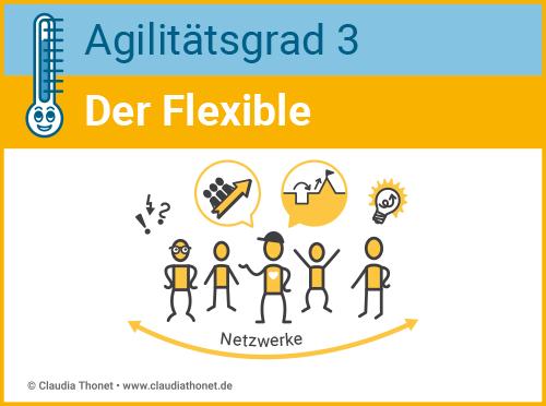 Agilitätsgrad 3, Führungstyp, Der Flexible